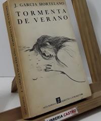 Tormenta de verano - Juan García Hortelano