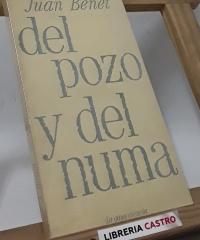 Del pozo y del numa (Un ensayo y una leyenda) - Juan Benet