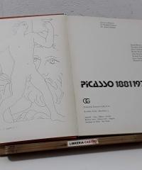 Picasso 1881 - 1973 - Varios